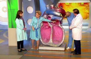 Частое сердцебиение – как успокоить сердце?